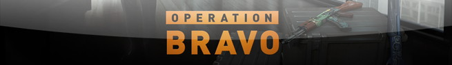 operation_bravo